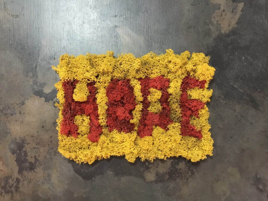 Tablou HOPE cu licheni stabilizati