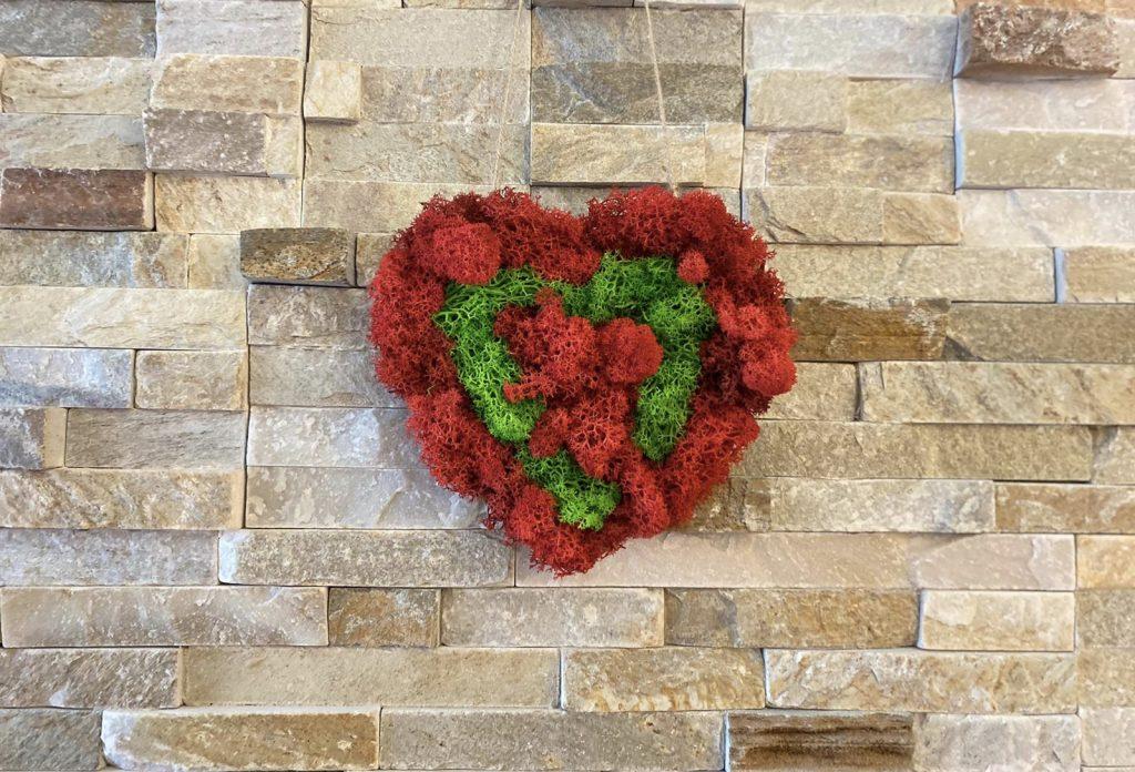 Tablou inimă din licheni